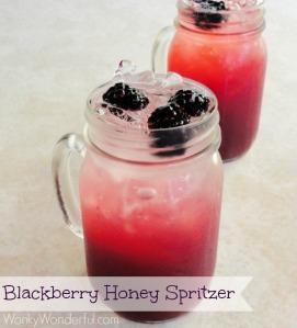 Blackberry-Honey-Spritzer-3