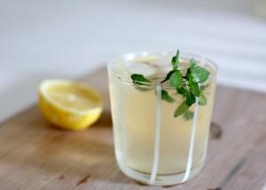 lemon-ginger-mint-drink-550x394